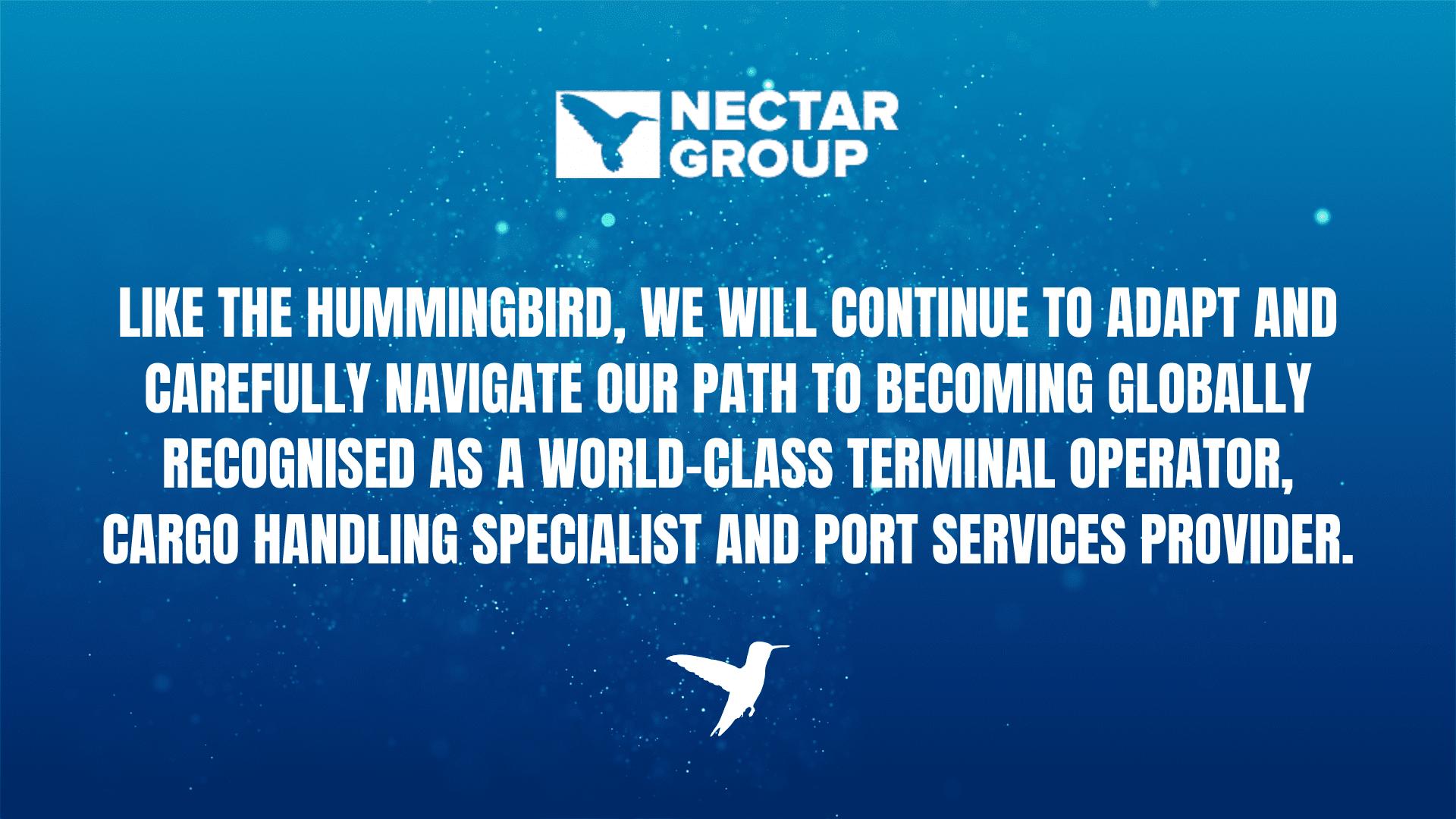 Nectar Post Proposal Hummingbird Website